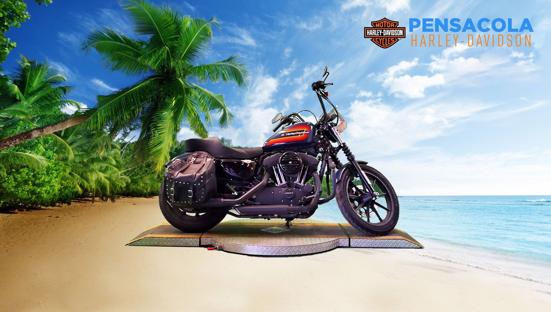 Pre-Owned 2020 Harley-Davidson Iron 1200 XL1200NS