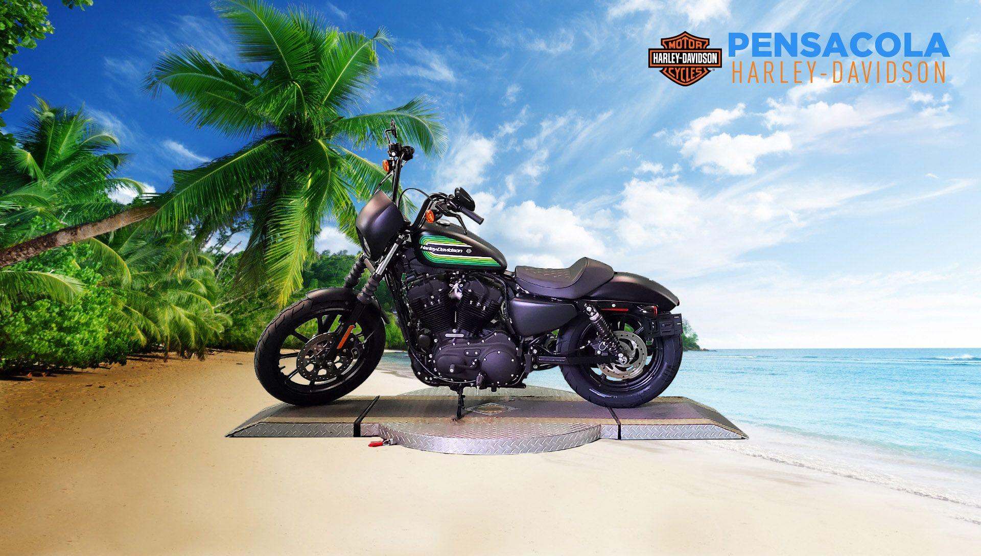 New 2021 Harley-Davidson Iron 1200 XL1200NS