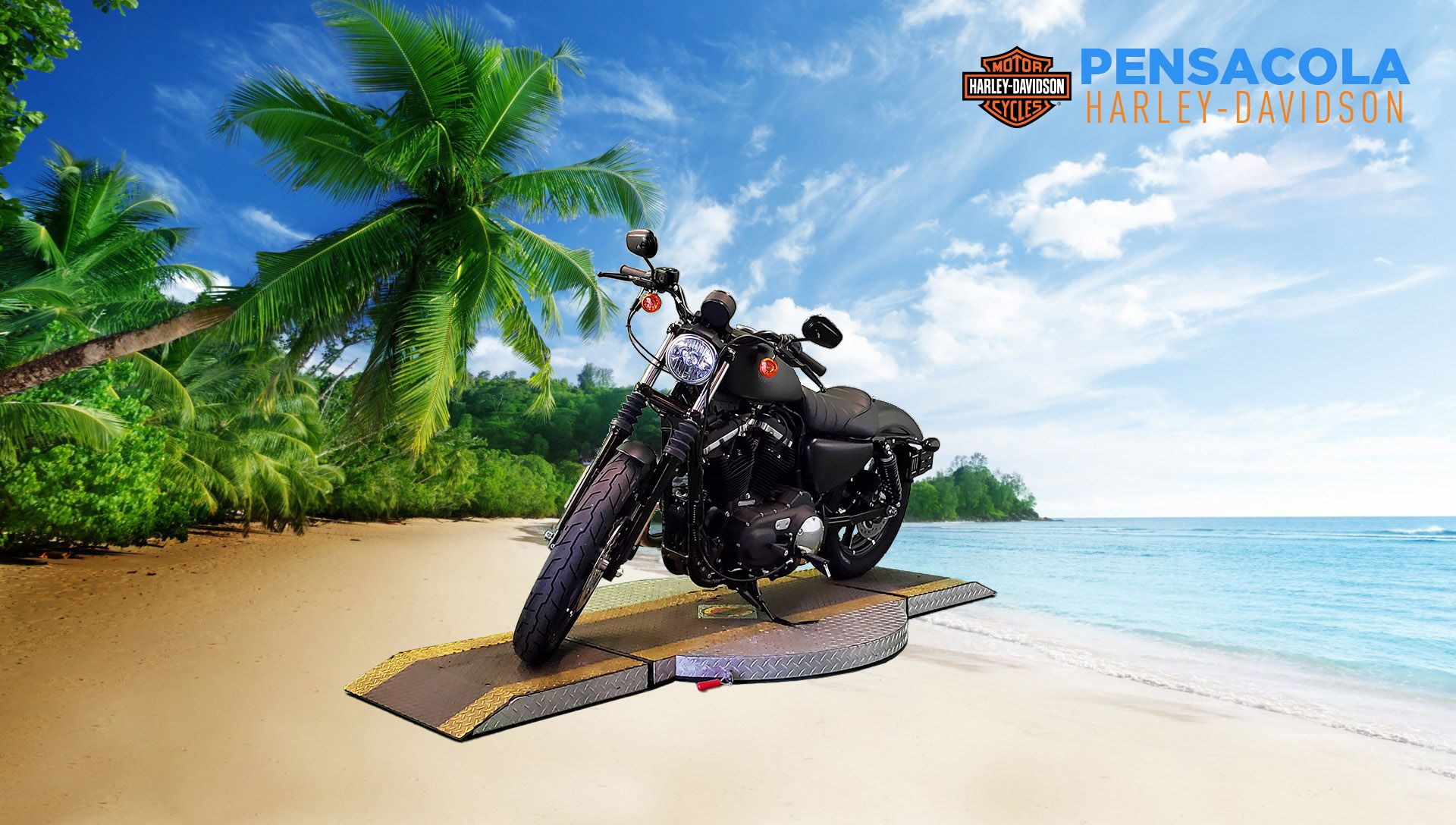 Certified Pre-Owned 2021 Harley-Davidson Iron 883 XL883N
