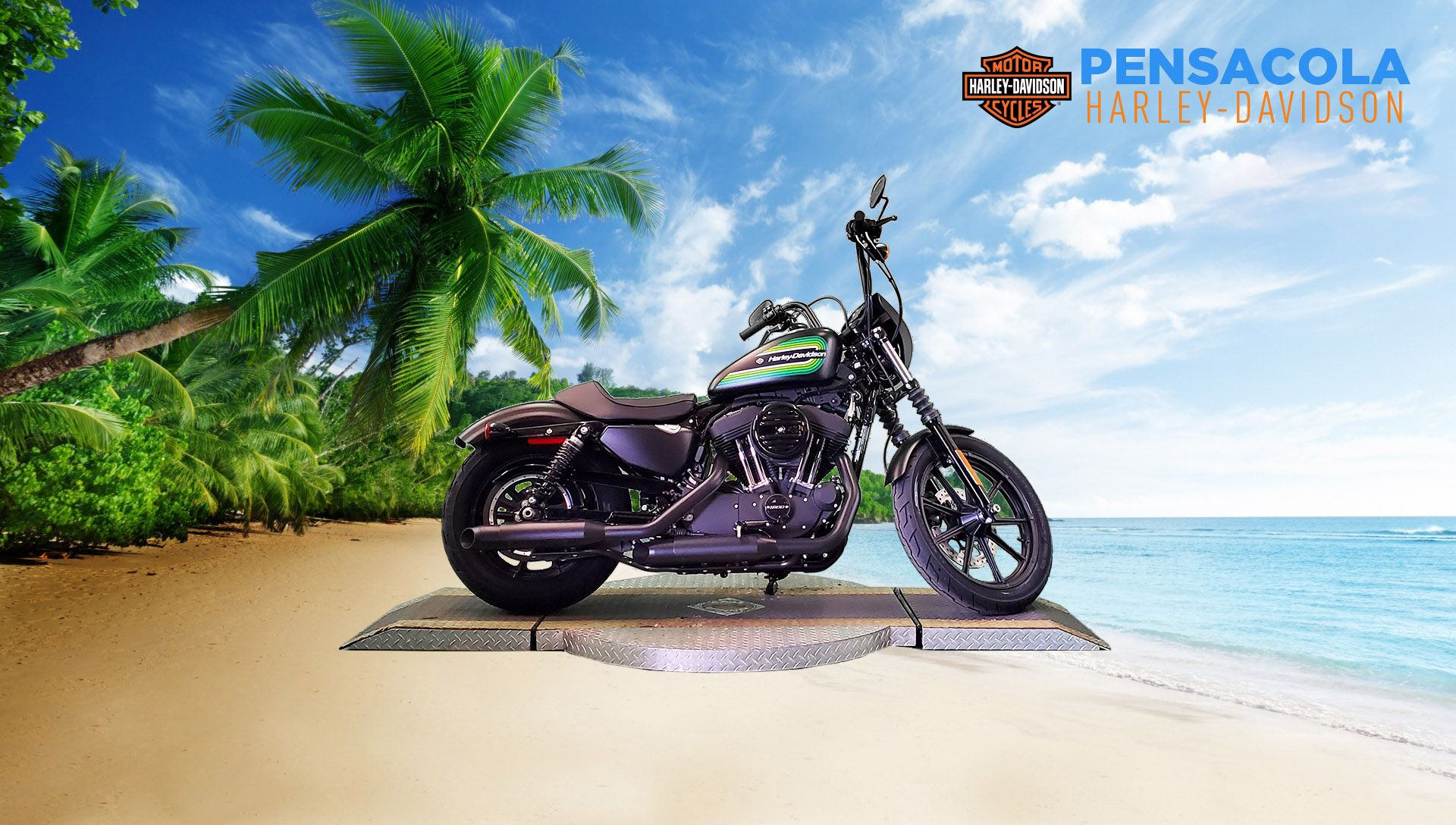 Certified Pre-Owned 2021 Harley-Davidson Iron 1200 XL1200NS