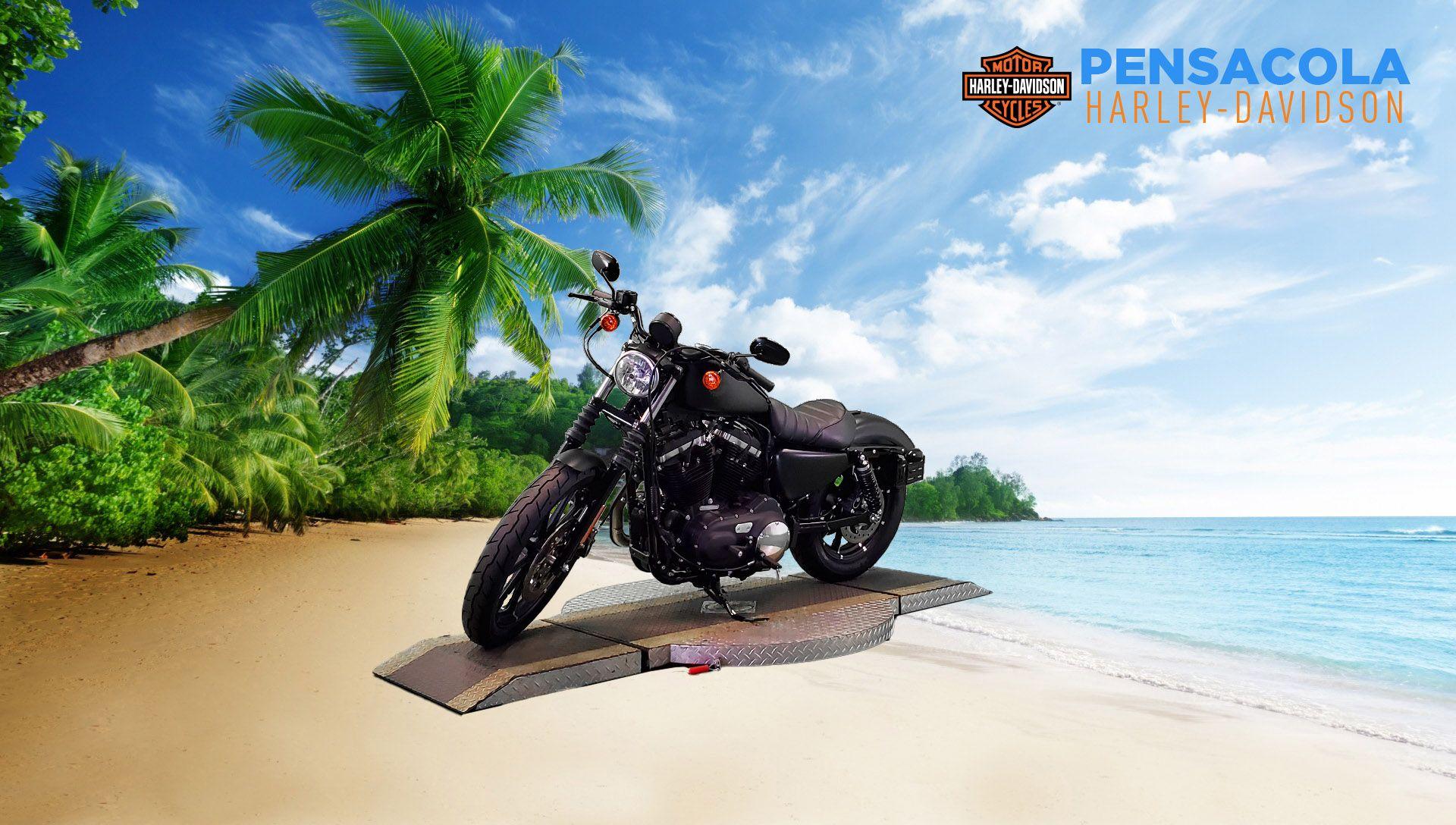 New 2021 Harley-Davidson Iron 883 XL883N