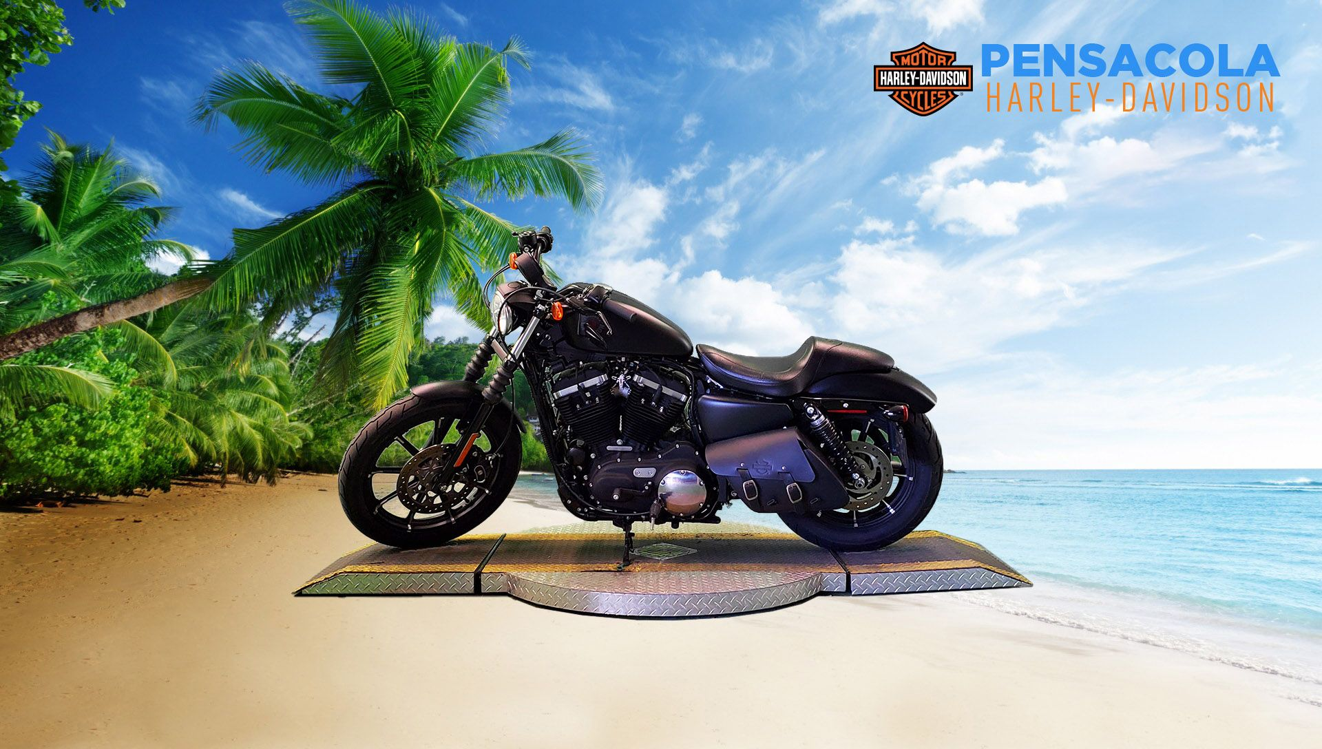 Pre-Owned 2021 Harley-Davidson Iron 883 XL883N