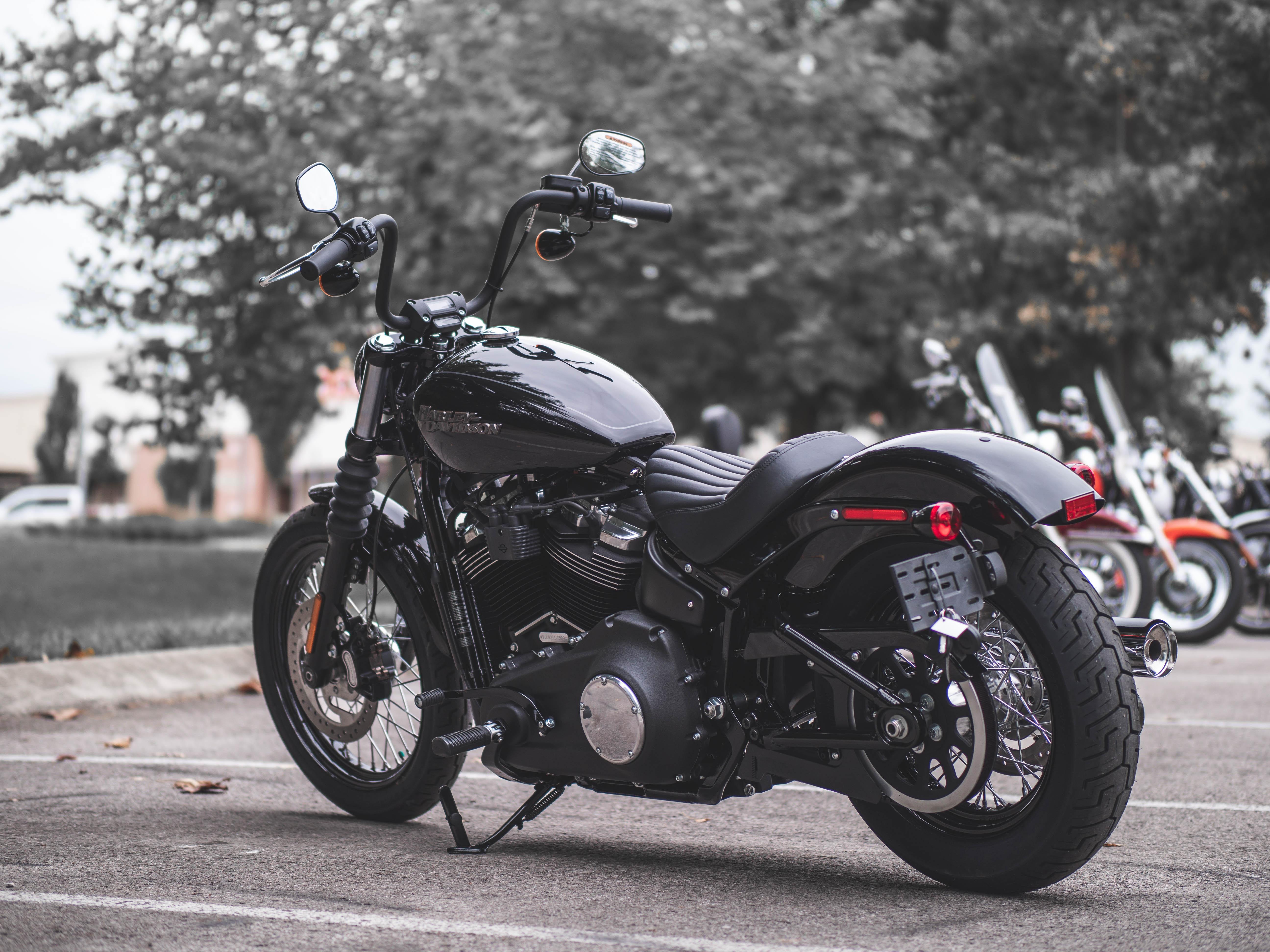 New 2019 Harley-Davidson Street Bob in Franklin #T068169 ...