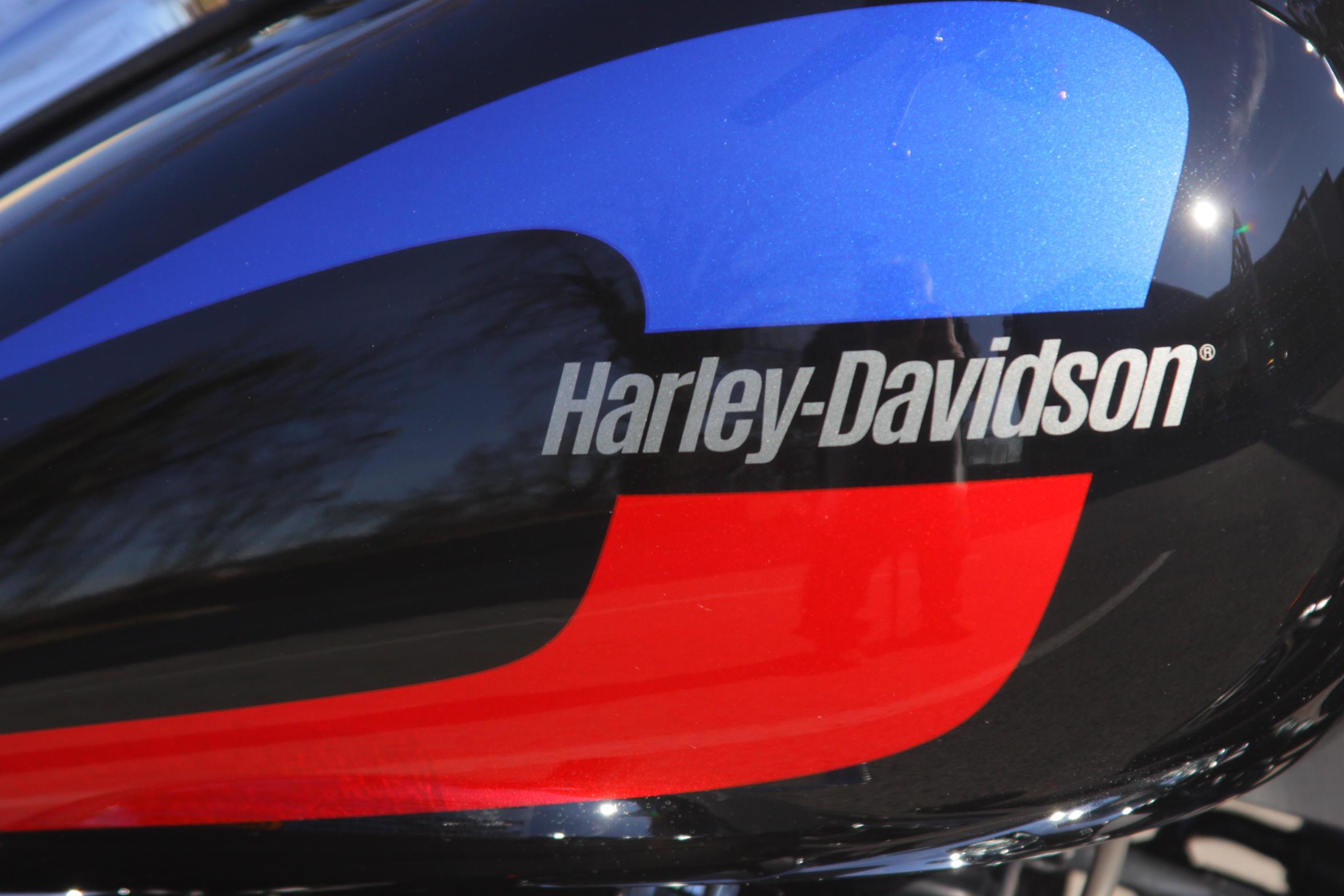 New 2020 Harley-Davidson Low Rider