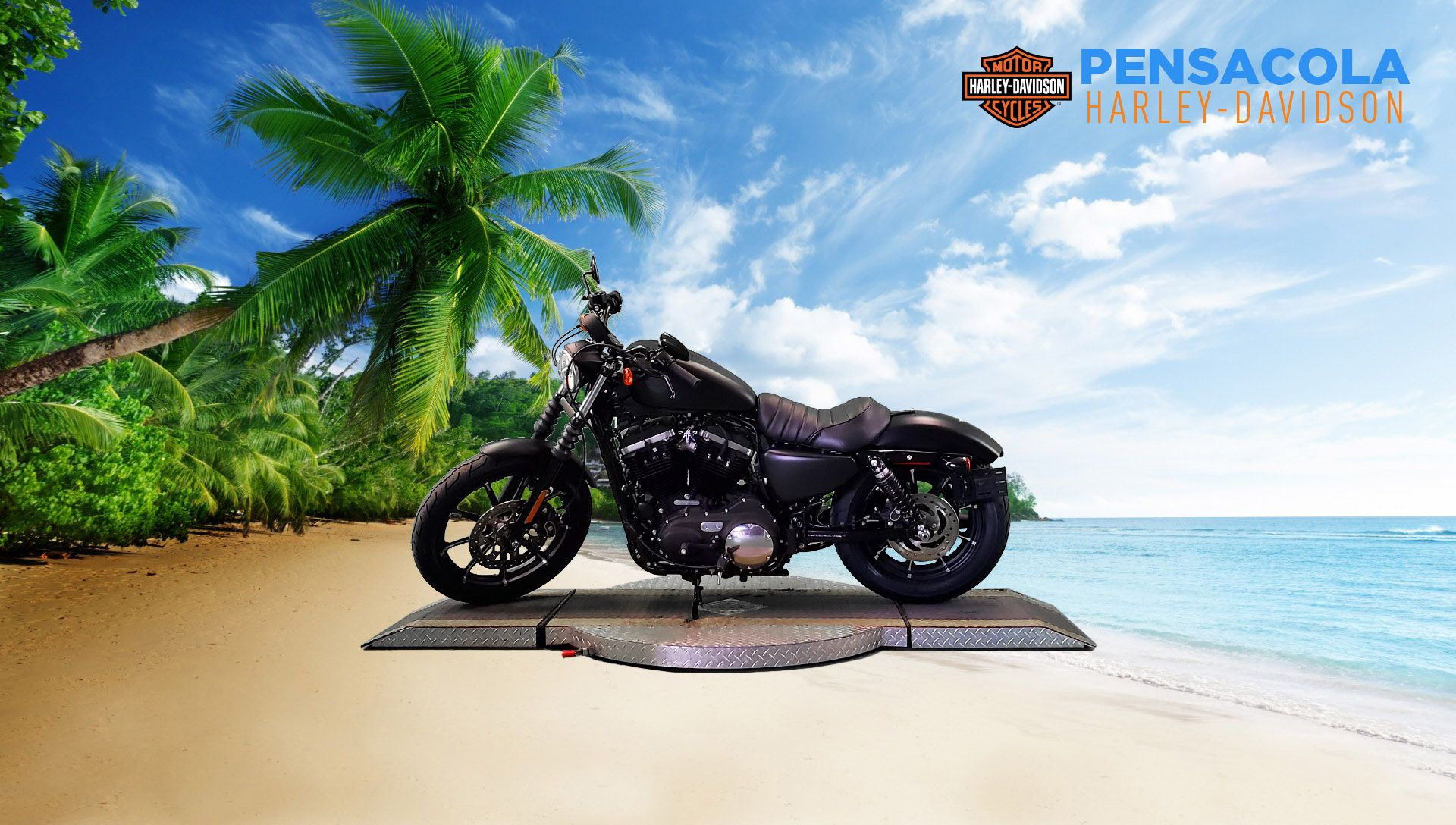 New 2021 Harley-Davidson Iron 883 XL883N