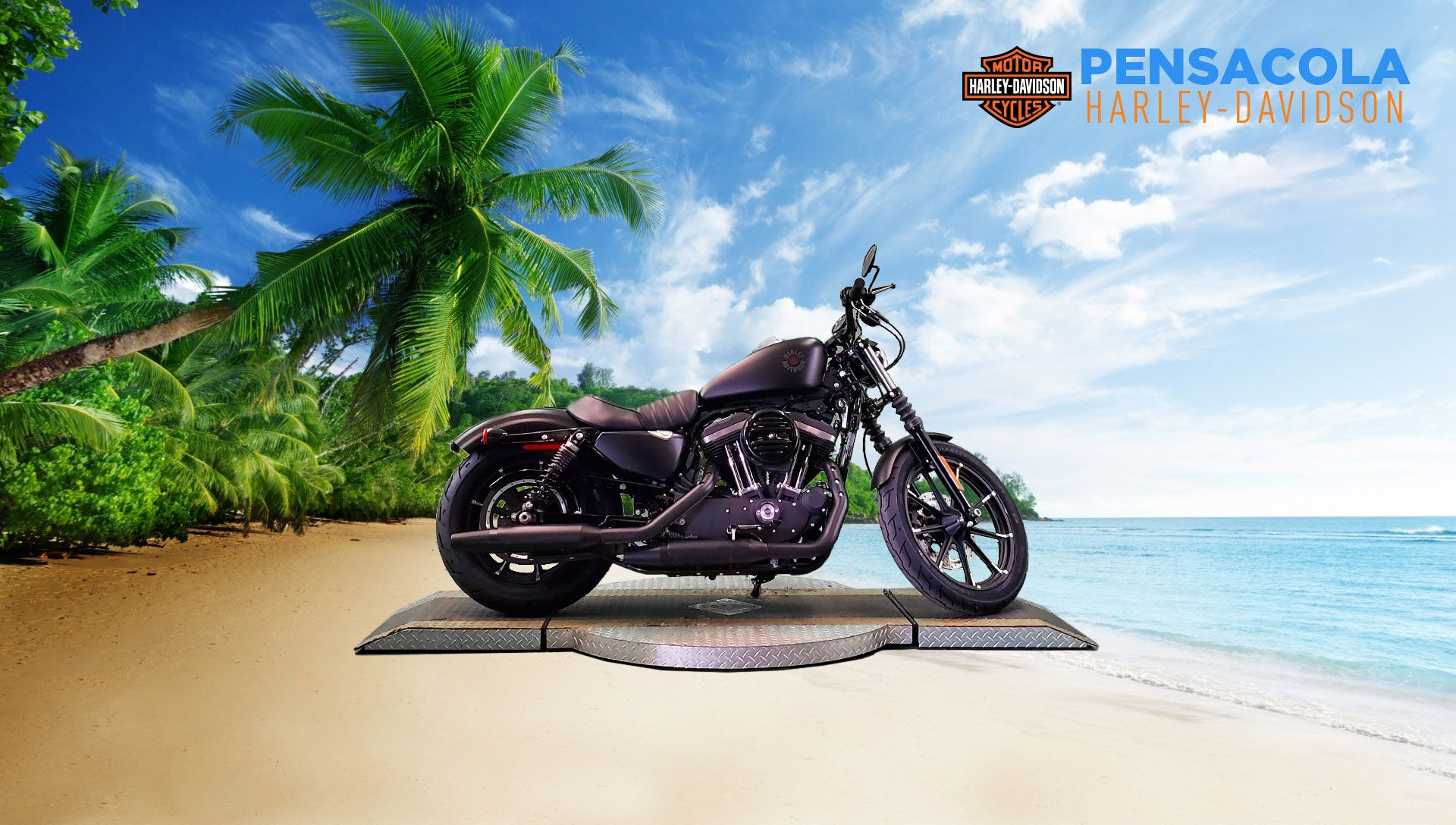 Pre-Owned 2020 Harley-Davidson Iron 883 XL883N