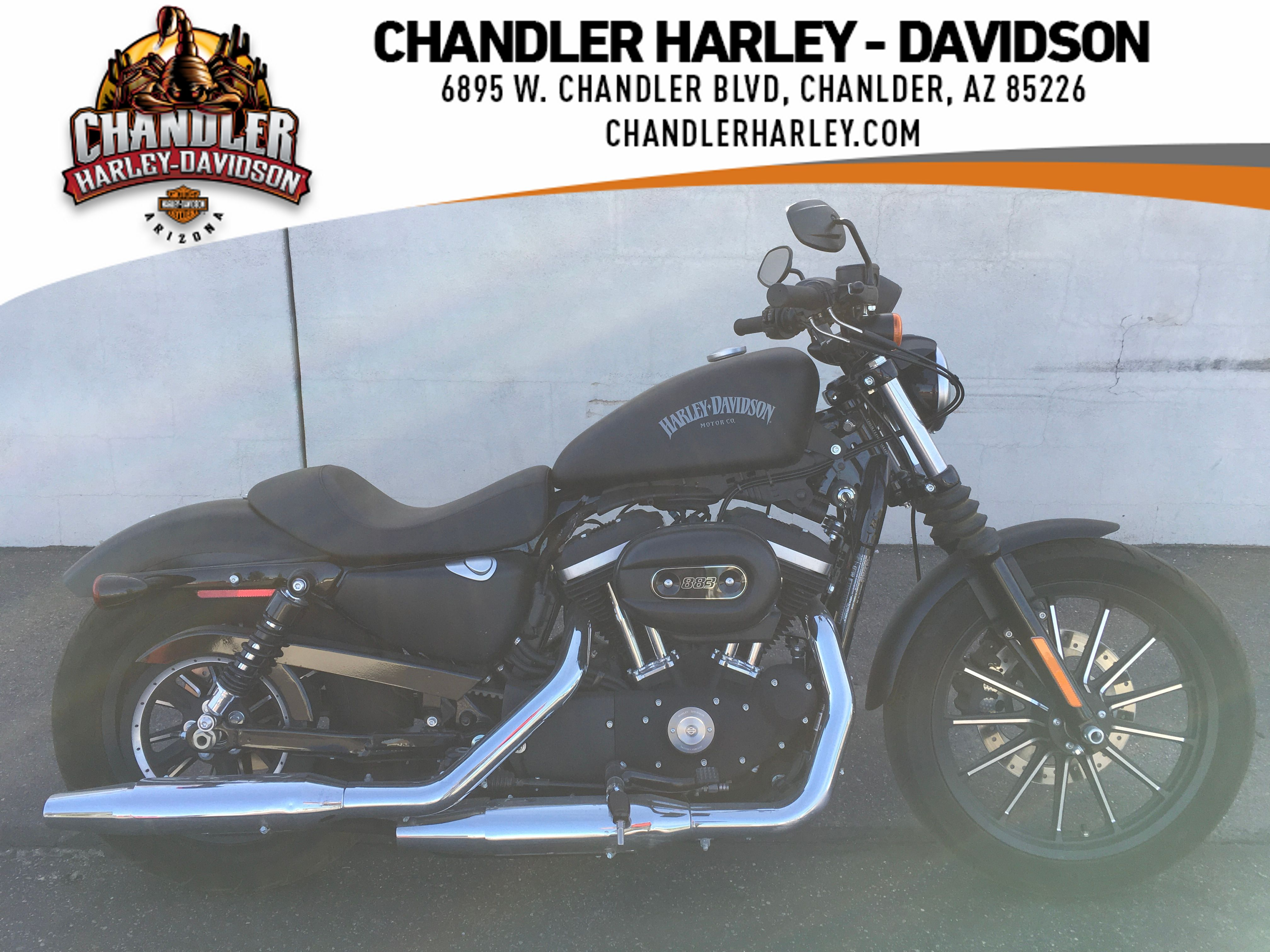 Pre-Owned 2014 Harley-Davidson Iron 883 Sportster XL883N